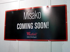 Coming Soon: Misako